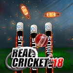 Real Cricket 18